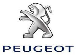 Logo Peugeot Parais Saint hilaire de chaleons